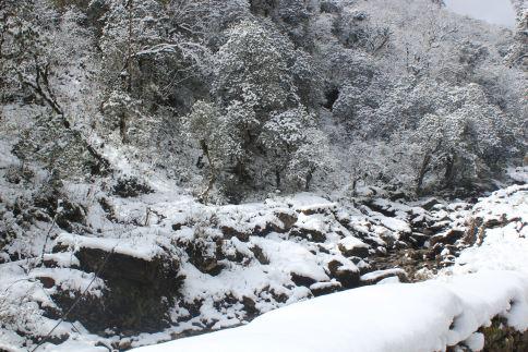 Annapurna Snowfall
